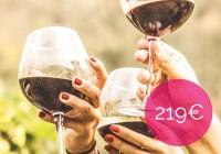 wine_tour_219